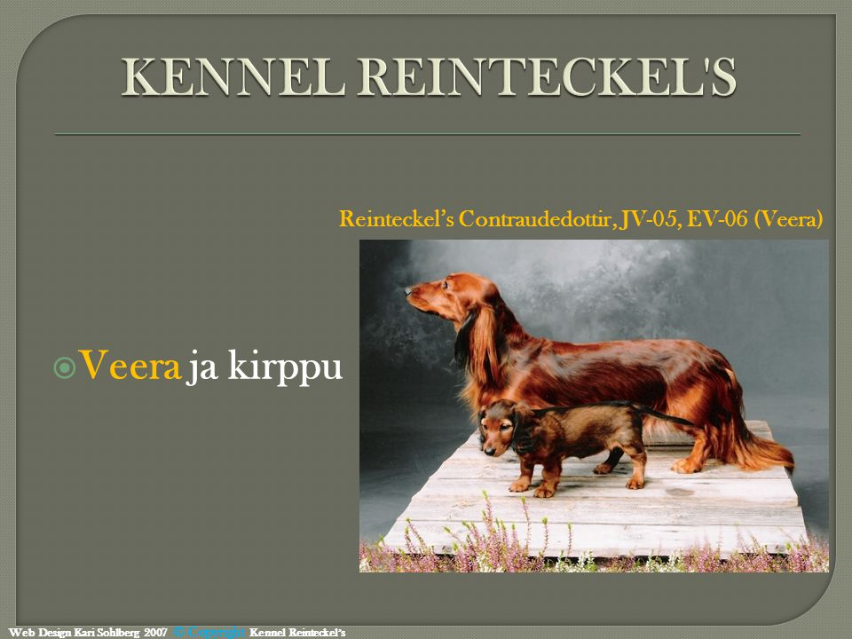  Veera ja kirppu Reinteckel's Contraudedottir, JV-05, EV-06 (Veera) Web Design Kari Sohlberg 2007 © Copyright Kennel Reinteckel's