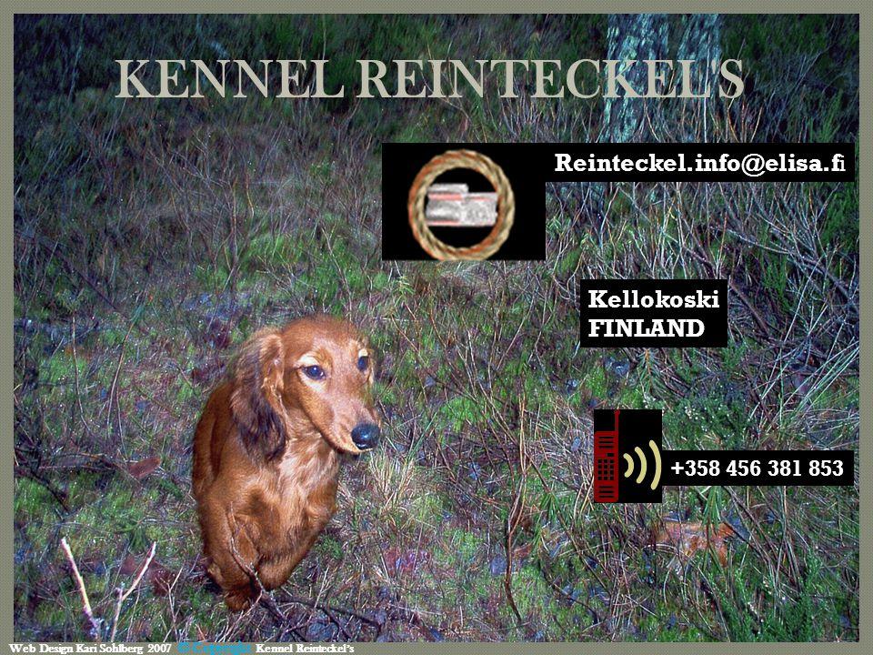 KENNEL REINTECKEL S +358 456 381 853 Kellokoski FINLAND Web Design Kari Sohlberg 2007 © Copyright Kennel Reinteckel's Reinteckel.info@elisa.f i