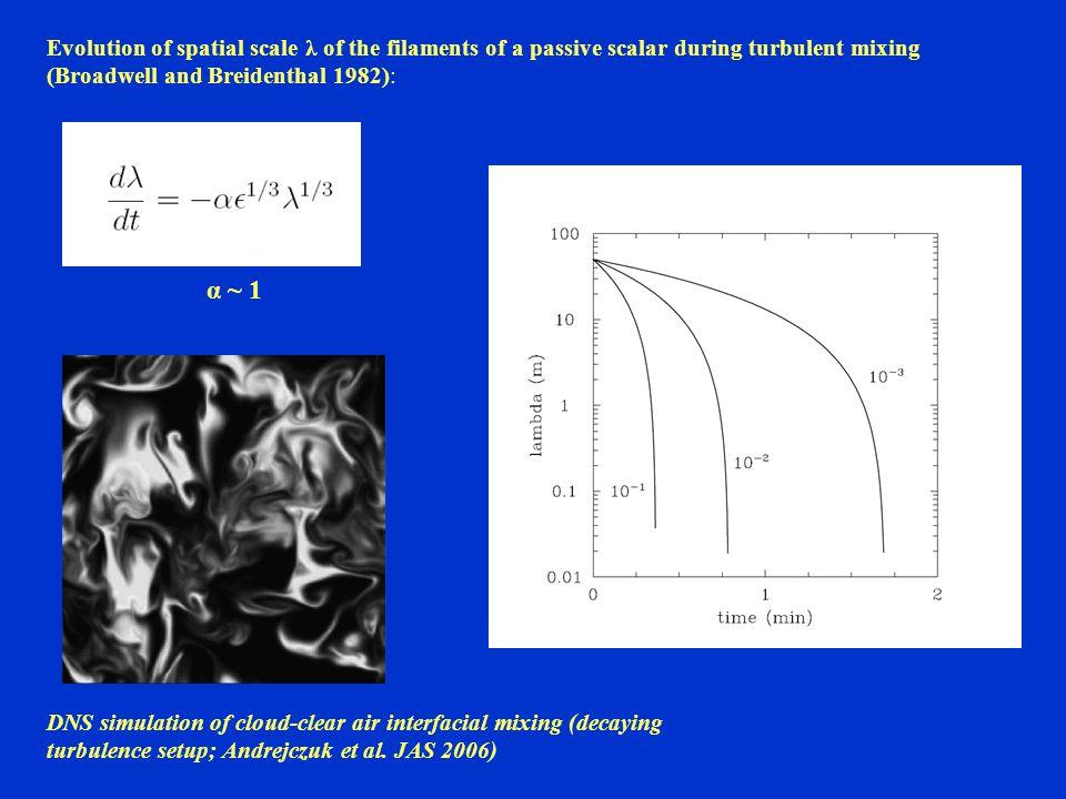 DNS simulation of cloud-clear air interfacial mixing (decaying turbulence setup; Andrejczuk et al.