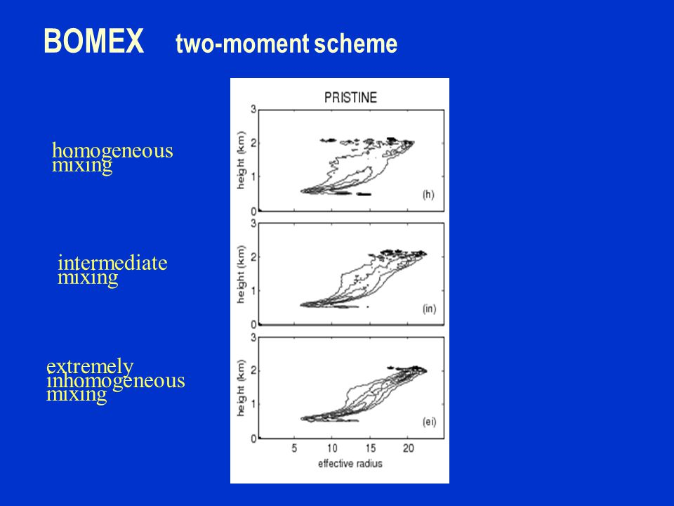 BOMEX two-moment scheme homogeneous mixing intermediate mixing extremely inhomogeneous mixing