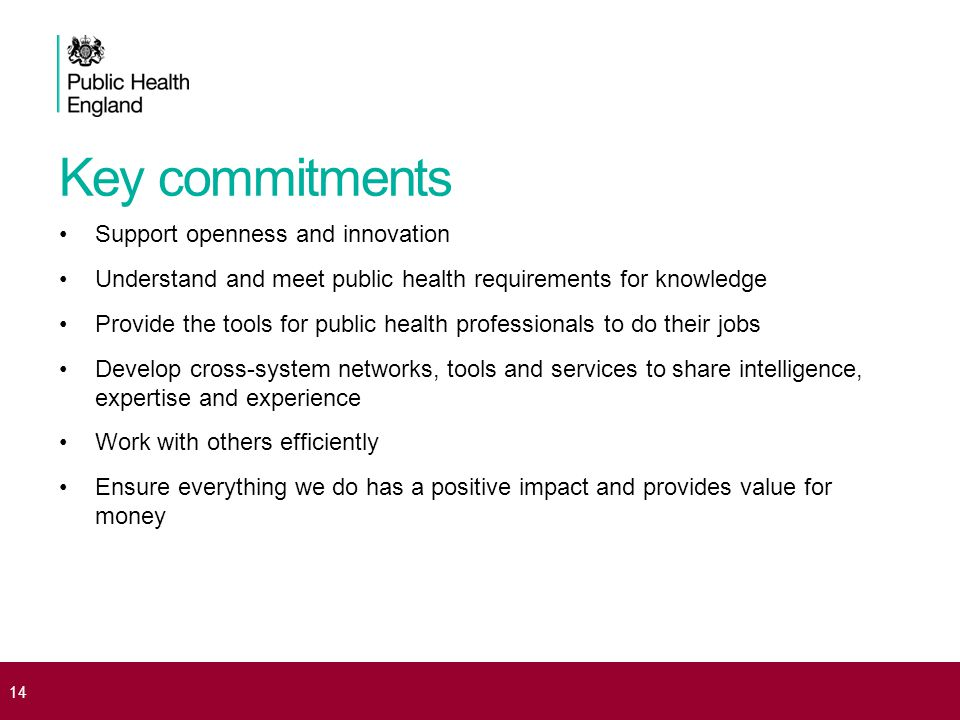 Key commitments 14 Support openness and innovation Understand and meet public health requirements for knowledge Provide the tools for public health professionals to do their jobs Develop cross-system networks, tools and services to share intelligence, expertise and experience Work with others efficiently Ensure everything we do has a positive impact and provides value for money