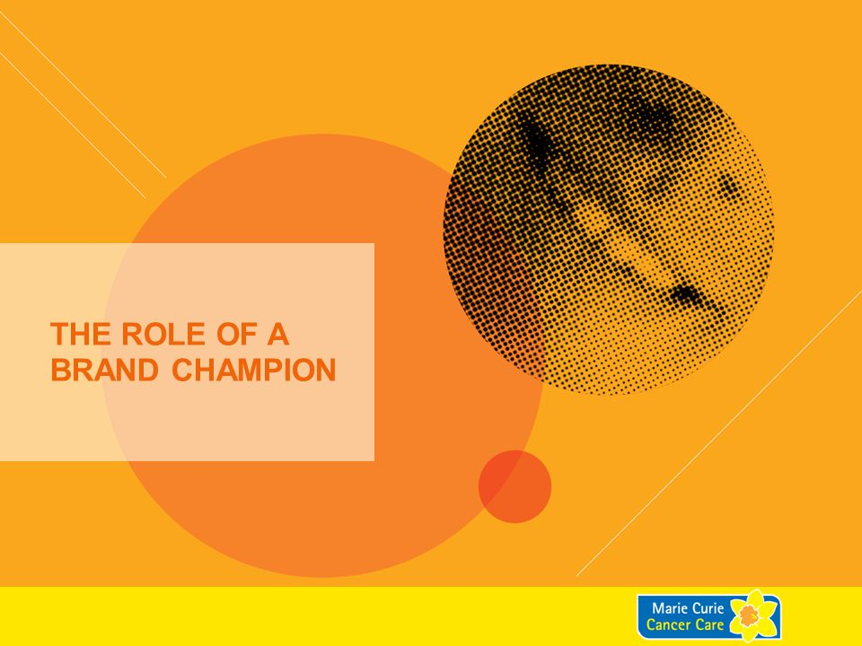 WHO IS A BRAND CHAMPION.4 What type of person is a Brand Champion.