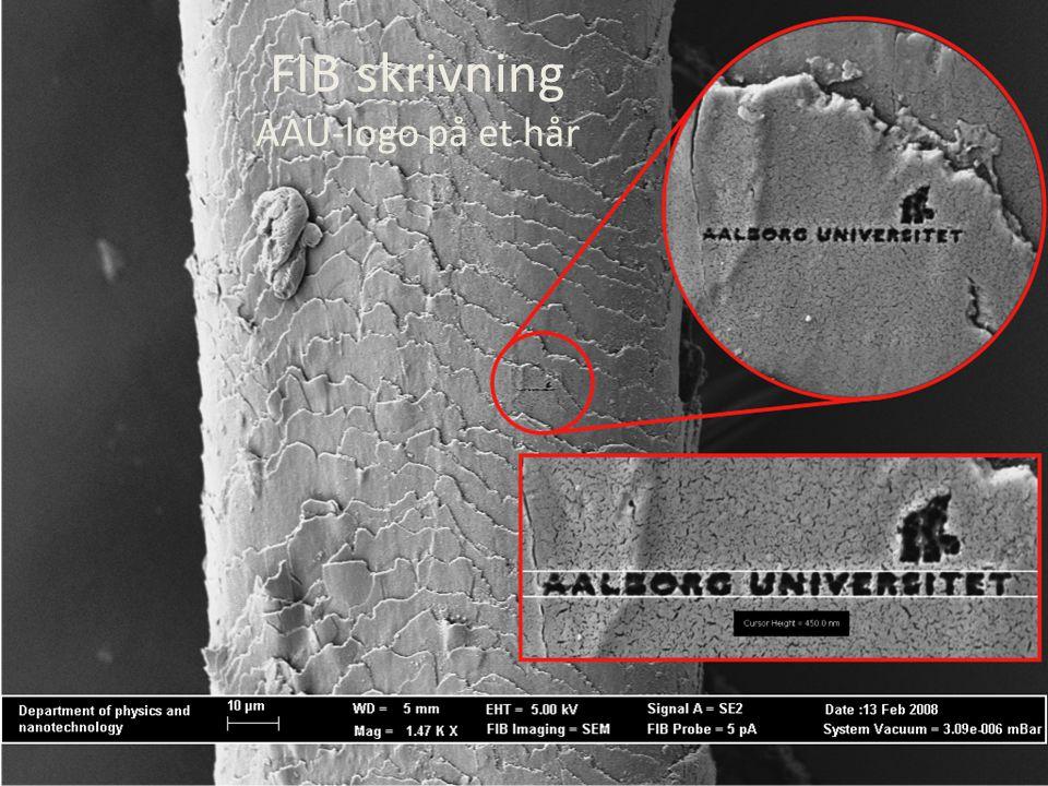 FIB skrivning AAU-logo på et hår
