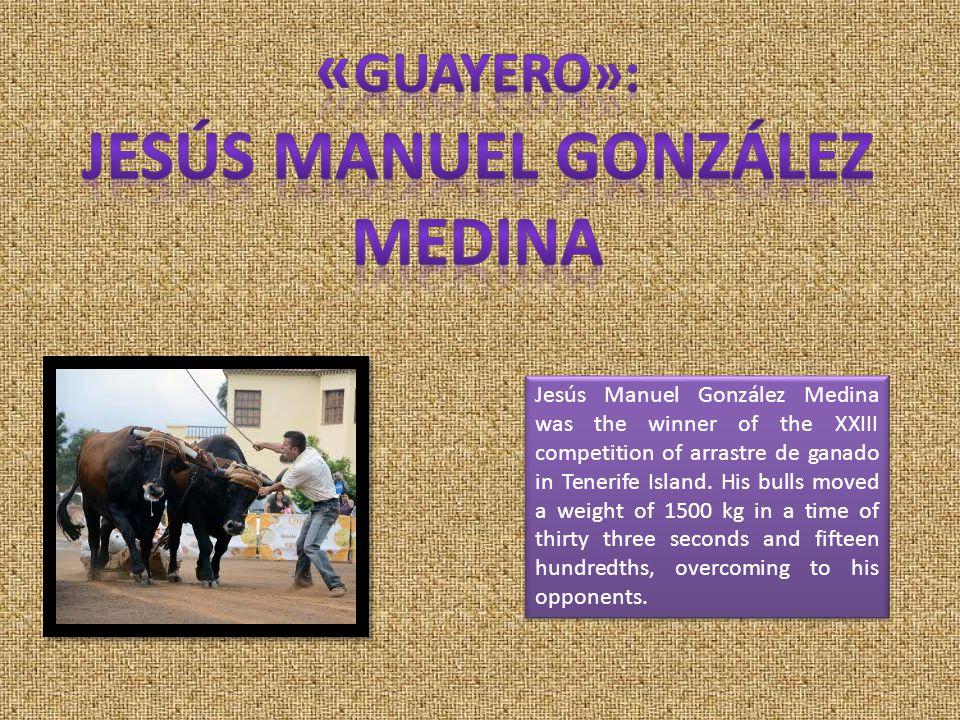 Jesús Manuel González Medina was the winner of the XXIII competition of arrastre de ganado in Tenerife Island.