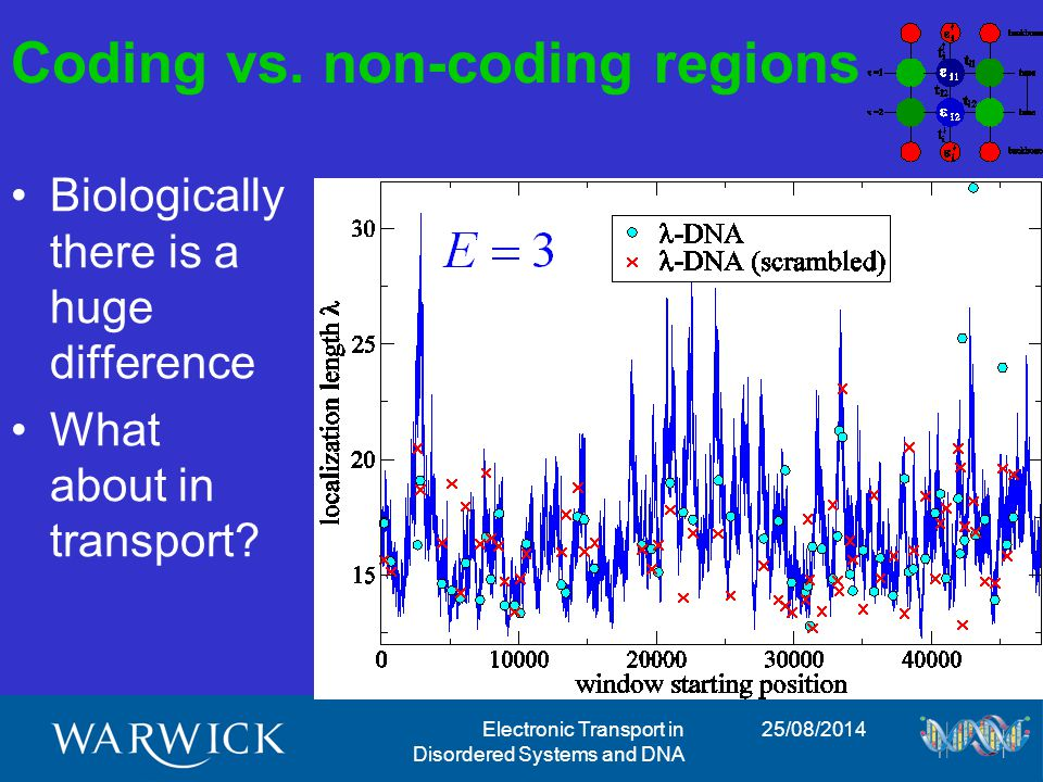 25/08/2014Electronic Transport in Disordered Systems and DNA Coding vs.
