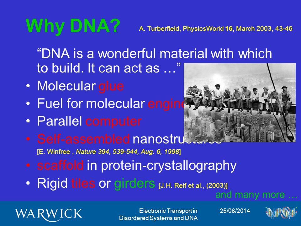 25/08/2014Electronic Transport in Disordered Systems and DNA Why disorder.