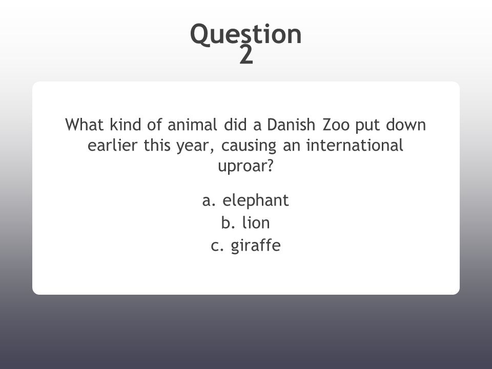 Question 2 What kind of animal did a Danish Zoo put down earlier this year, causing an international uproar.