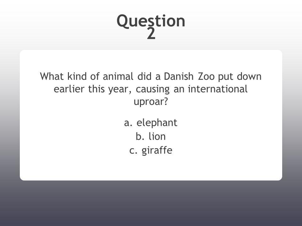 Question 2 What kind of animal did a Danish Zoo put down earlier this year, causing an international uproar? a. elephant b. lion c. giraffe