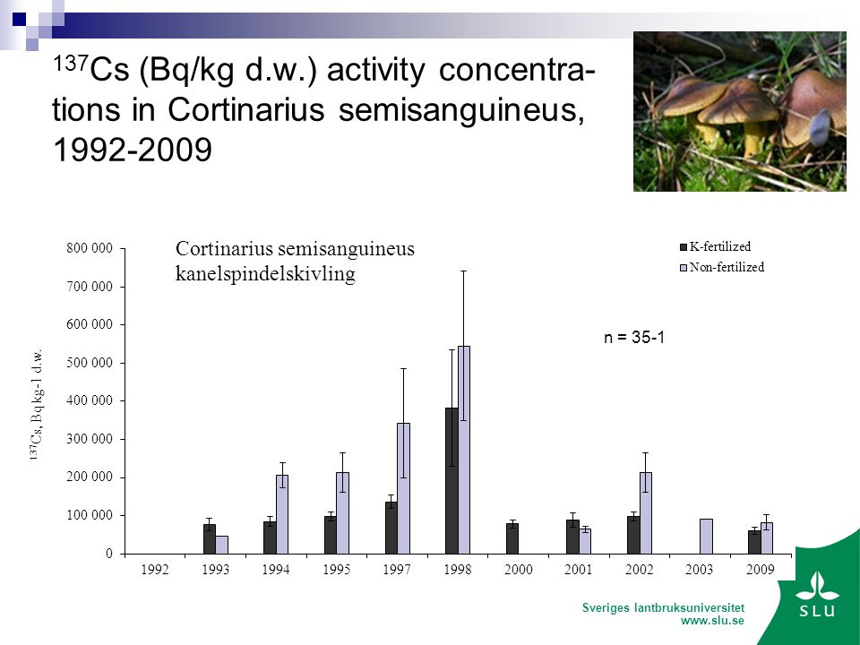 Sveriges lantbruksuniversitet Cs (Bq/kg d.w.) activity concentra- tions in Cortinarius semisanguineus,
