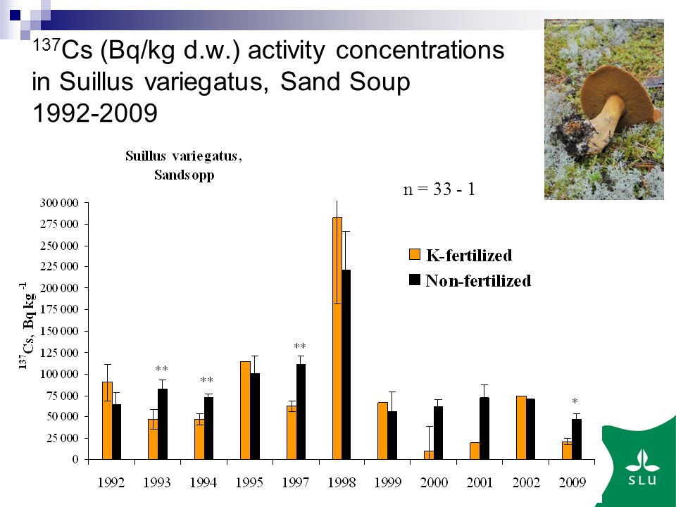Sveriges lantbruksuniversitet Cs (Bq/kg d.w.) activity concentrations in Suillus variegatus, Sand Soup n =
