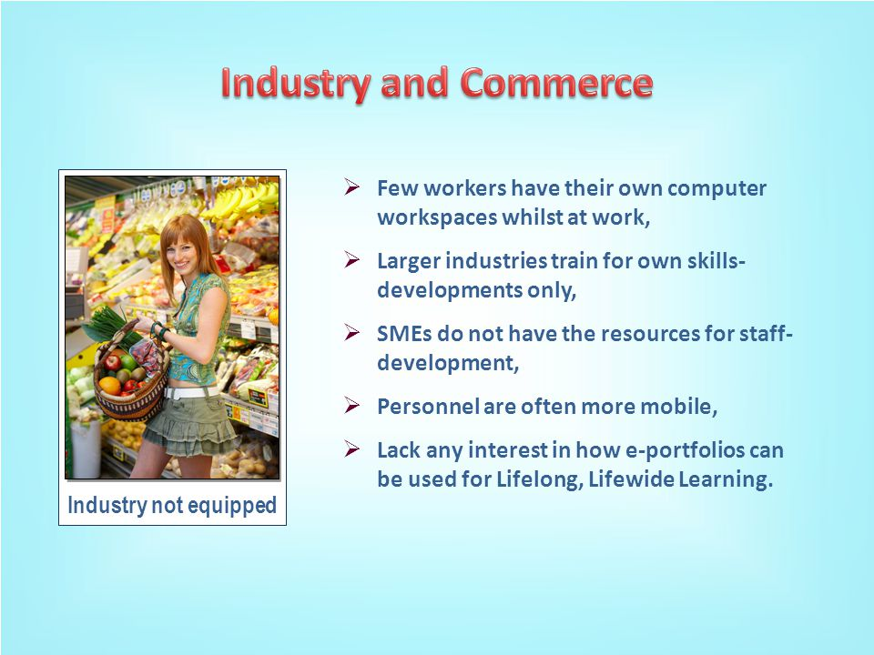 Industry not equipped  Few workers have their own computer workspaces whilst at work,  Larger industries train for own skills- developments only,  SMEs do not have the resources for staff- development,  Personnel are often more mobile,  Lack any interest in how e-portfolios can be used for Lifelong, Lifewide Learning.