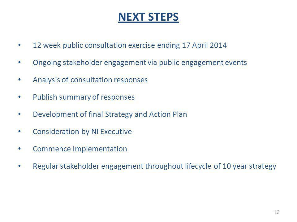 NEXT STEPS 12 week public consultation exercise ending 17 April 2014 Ongoing stakeholder engagement via public engagement events Analysis of consultation responses Publish summary of responses Development of final Strategy and Action Plan Consideration by NI Executive Commence Implementation Regular stakeholder engagement throughout lifecycle of 10 year strategy 19