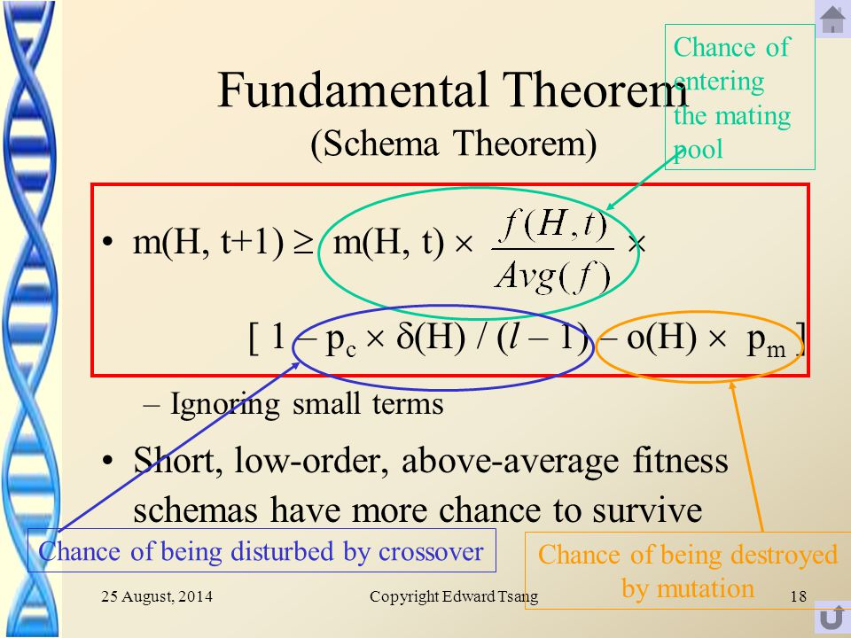25 August, 2014Copyright Edward Tsang18 Fundamental Theorem (Schema Theorem) m(H, t+1)  m(H, t)   [ 1 – p c   (H) / (l – 1) – o(H)  p m ] –Ignoring small terms Short, low-order, above-average fitness schemas have more chance to survive Chance of entering the mating pool Chance of being disturbed by crossover Chance of being destroyed by mutation