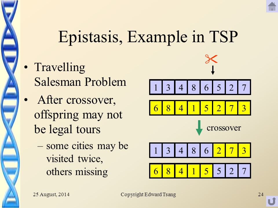 25 August, 2014Copyright Edward Tsang24 Epistasis, Example in TSP Travelling Salesman Problem After crossover, offspring may not be legal tours –some cities may be visited twice, others missing 136 8 45 27 685 1 42 73 136 8 4 685 1 4 2 73 5 27 crossover 