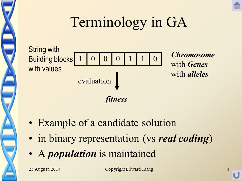 25 August, 2014Copyright Edward Tsang4 Terminology in GA Example of a candidate solution in binary representation (vs real coding) A population is maintained 1000110 Chromosome with Genes with alleles String with Building blocks with values fitness evaluation