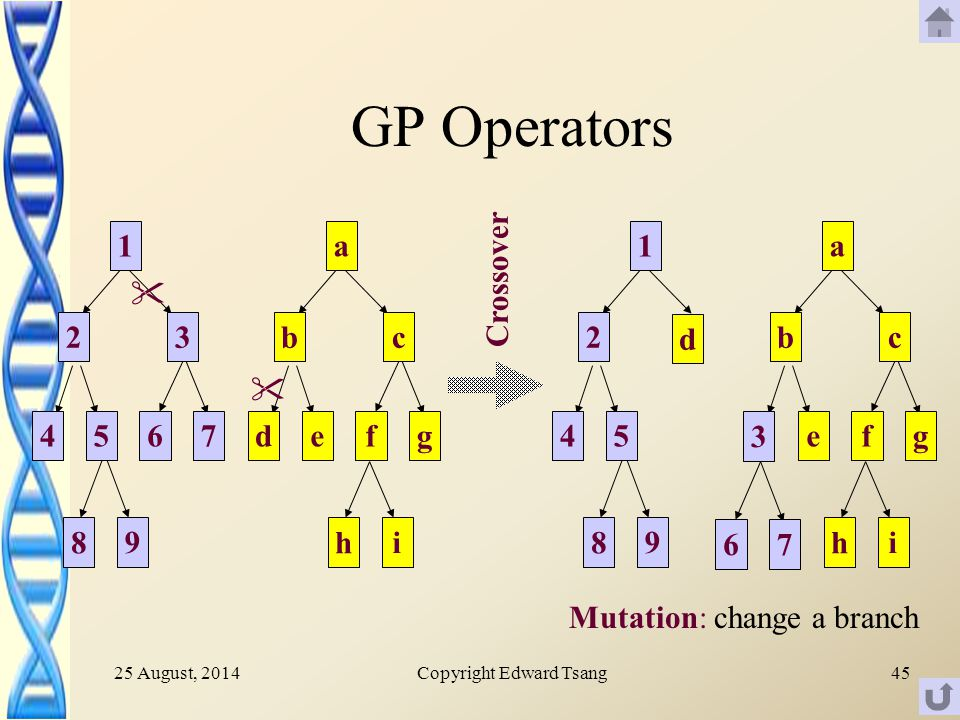 25 August, 2014Copyright Edward Tsang45 GP Operators a d cb gfe i h a d cb gfe i h   Crossover Mutation: change a branch