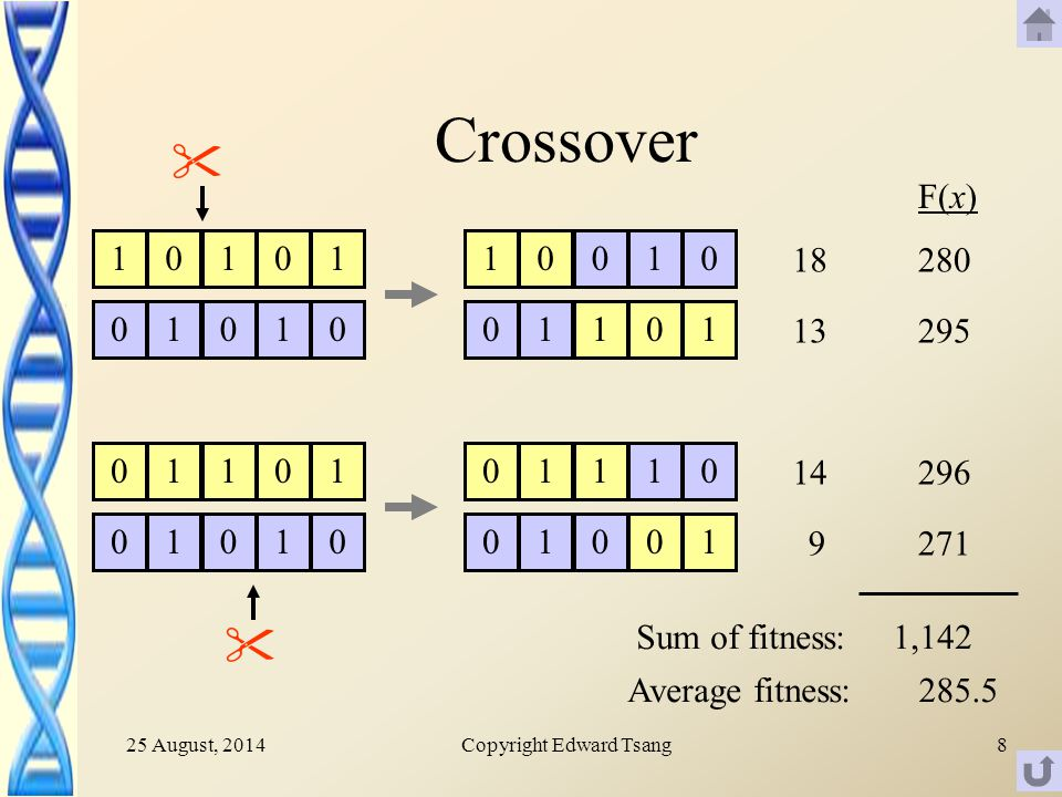 25 August, 2014Copyright Edward Tsang8 Crossover  F(x) , Sum of fitness: Average fitness: 