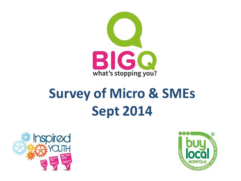 Survey of Micro & SMEs Sept 2014