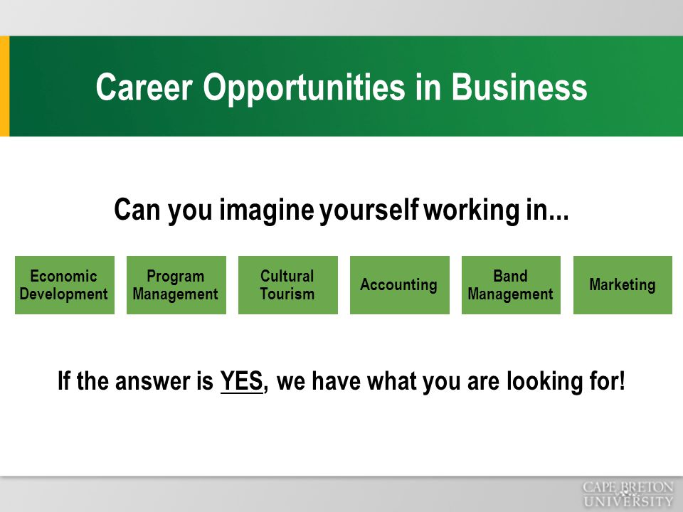 Career Opportunities in Business Can you imagine yourself working in...