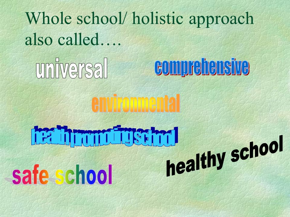 Whole school/ holistic approach also called….