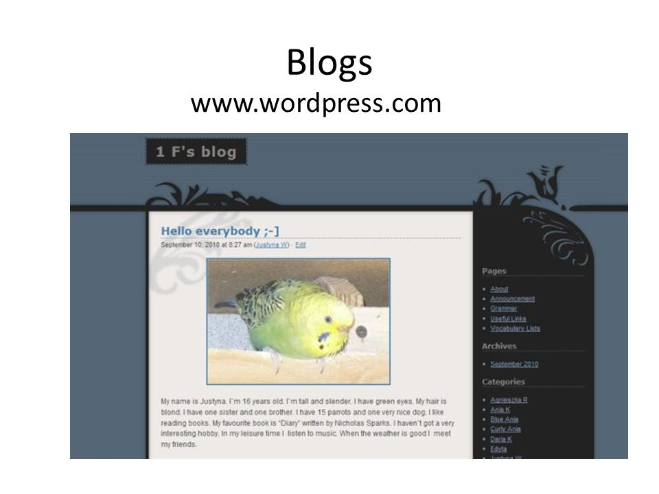 Blogs www.wordpress.com