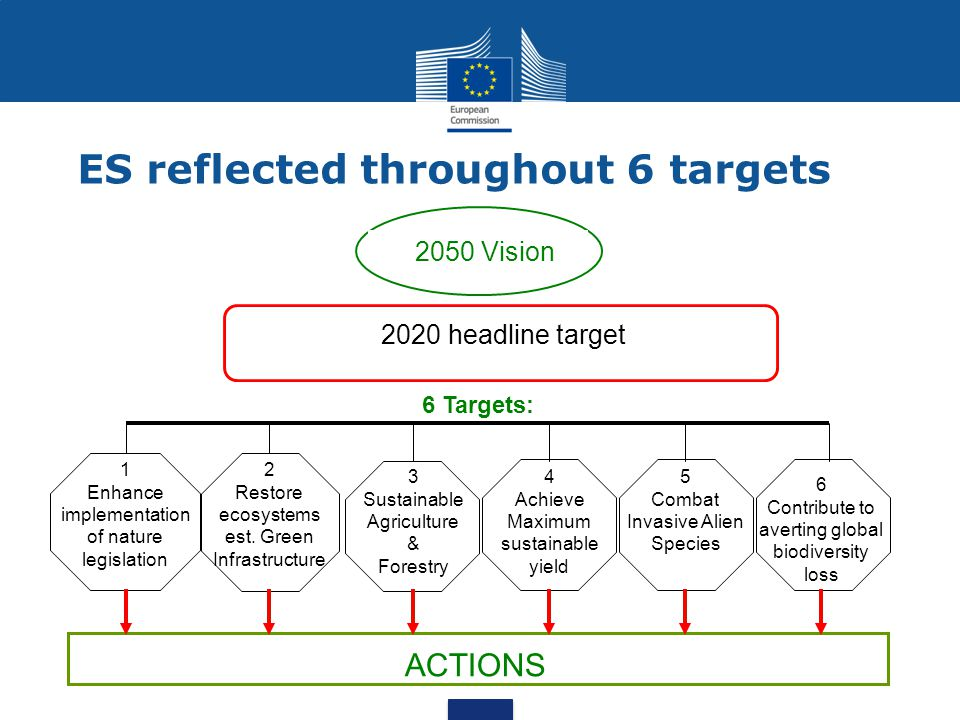 Target 2 in the Biodiversity Strategy Target 2: By 2020, ecosystems and their services are maintained and enhanced through the establishment of Green Infrastructure and the restoration of at least 15% of degraded ecosystems.