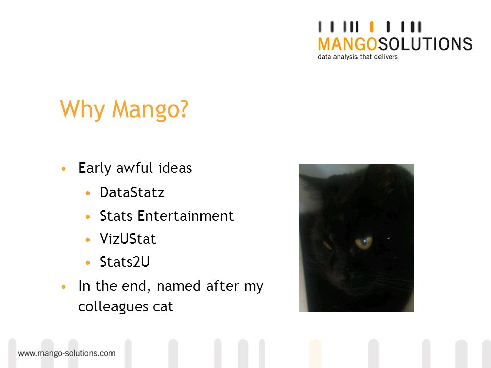 Why Mango? Early awful ideas DataStatz Stats Entertainment VizUStat Stats2U In the end, named after my colleagues cat