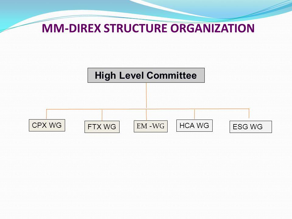 MM-DIREX STRUCTURE ORGANIZATION High Level Committee CPX WG FTX WGESG WG HCA WG EM -WG