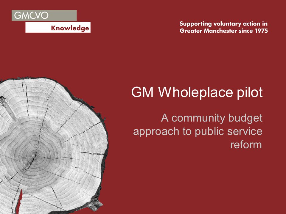 Wholeplace in GM What it is Why it's happening Our experience with Transforming Justice Expected developments Key points