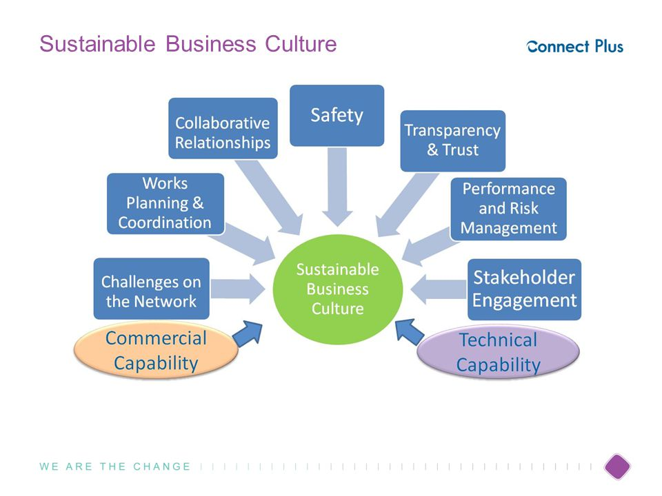 Sustainable Business Culture