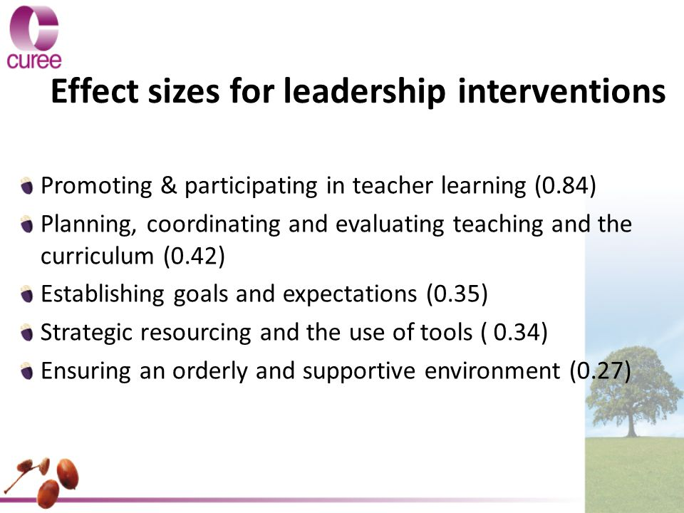 Effect sizes for leadership interventions Promoting & participating in teacher learning (0.84) Planning, coordinating and evaluating teaching and the curriculum (0.42) Establishing goals and expectations (0.35) Strategic resourcing and the use of tools ( 0.34) Ensuring an orderly and supportive environment (0.27)