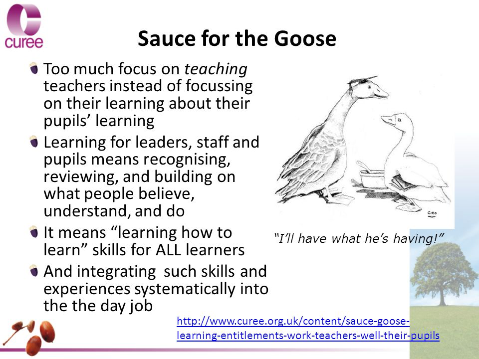 Sauce for the Goose Too much focus on teaching teachers instead of focussing on their learning about their pupils' learning Learning for leaders, staff and pupils means recognising, reviewing, and building on what people believe, understand, and do It means learning how to learn skills for ALL learners And integrating such skills and experiences systematically into the the day job I'll have what he's having! http://www.curee.org.uk/content/sauce-goose- learning-entitlements-work-teachers-well-their-pupils