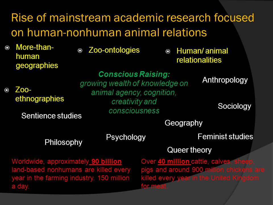 Rise of mainstream academic research focused on human-nonhuman animal relations  Human/ animal relationalities  Zoo-ontologies  More-than- human geographies  Zoo- ethnographies Conscious Raising: growing wealth of knowledge on animal agency, cognition, creativity and consciousness Sociology Philosophy Psychology Anthropology Feminist studies Queer theory Geography Sentience studies Worldwide, approximately 90 billion land-based nonhumans are killed every year in the farming industry.