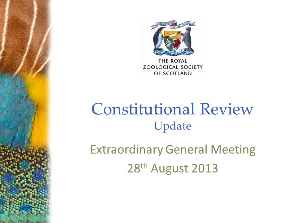 Constitutional Review Update Extraordinary General Meeting 28 th August 2013