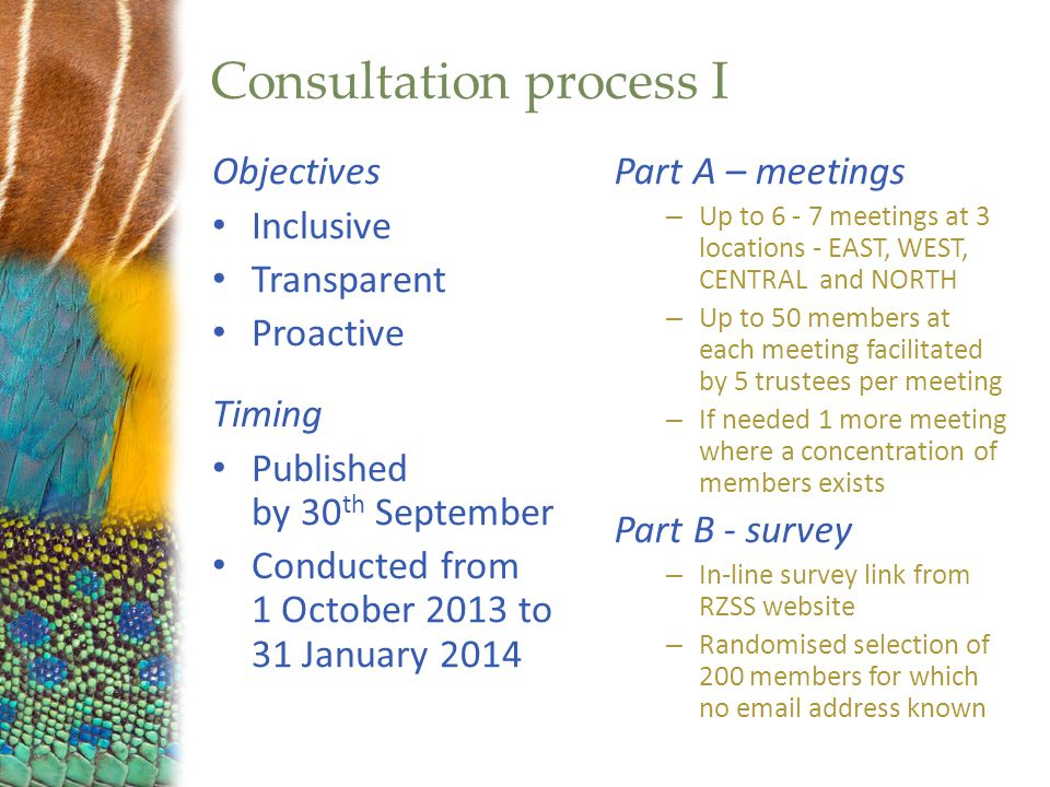 Consultation process I Objectives Inclusive Transparent Proactive Timing Published by 30 th September Conducted from 1 October 2013 to 31 January 2014 Part A – meetings – Up to 6 - 7 meetings at 3 locations - EAST, WEST, CENTRAL and NORTH – Up to 50 members at each meeting facilitated by 5 trustees per meeting – If needed 1 more meeting where a concentration of members exists Part B - survey – In-line survey link from RZSS website – Randomised selection of 200 members for which no email address known