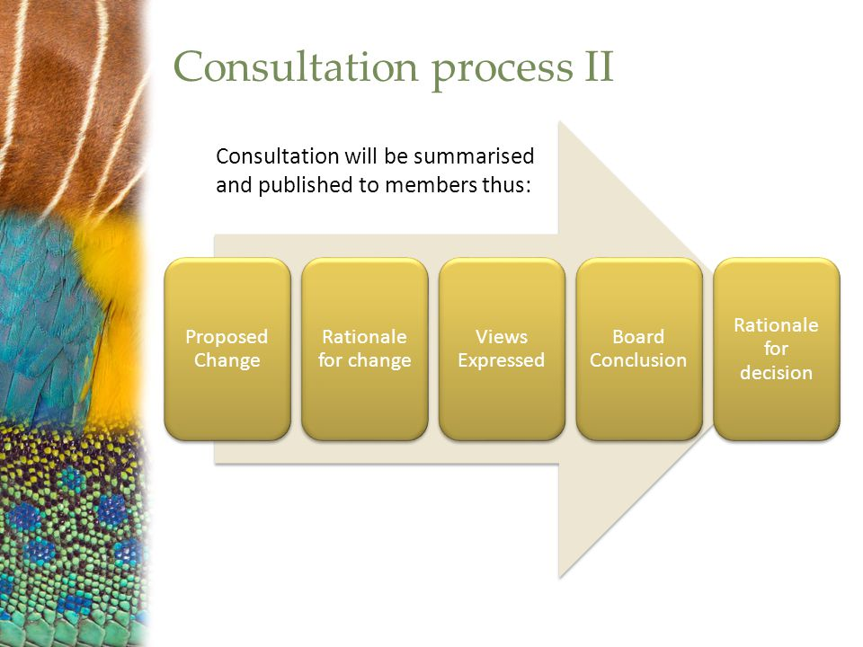 Consultation process II Proposed Change Rationale for change Views Expressed Board Conclusion Rationale for decision Consultation will be summarised and published to members thus: