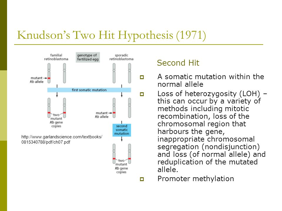 Knudson's Two Hit Hypothesis (1971)  A somatic mutation within the normal allele  Loss of heterozygosity (LOH) – this can occur by a variety of meth