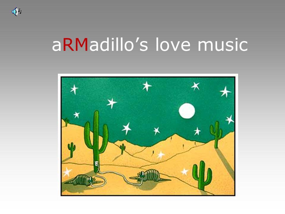 aRMadillo's love music