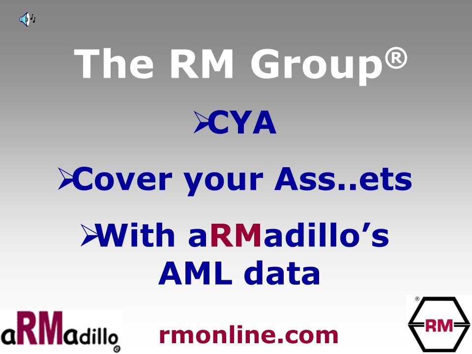 The RM Group ®  CYA  Cover your Ass..ets  With aRMadillo's AML data rmonline.com