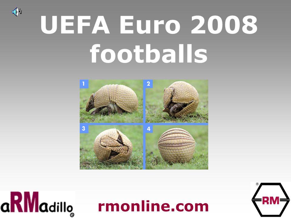 UEFA Euro 2008 footballs rmonline.com