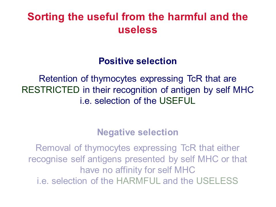 Retention of thymocytes expressing TcR that are RESTRICTED in their recognition of antigen by self MHC i.e. selection of the USEFUL Positive selection