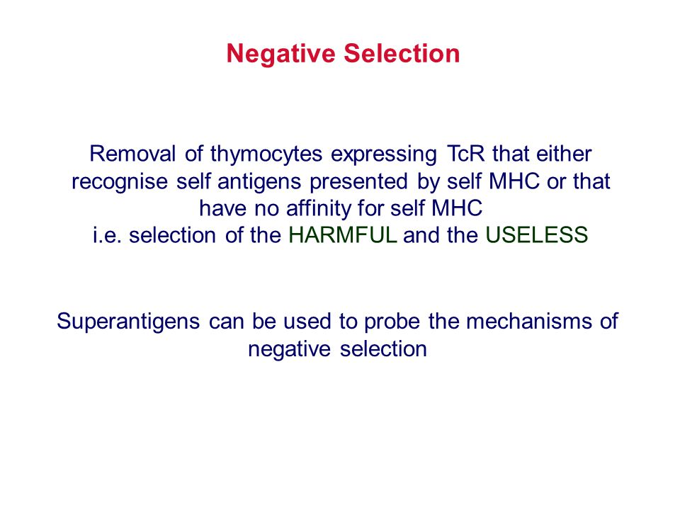Removal of thymocytes expressing TcR that either recognise self antigens presented by self MHC or that have no affinity for self MHC i.e. selection of