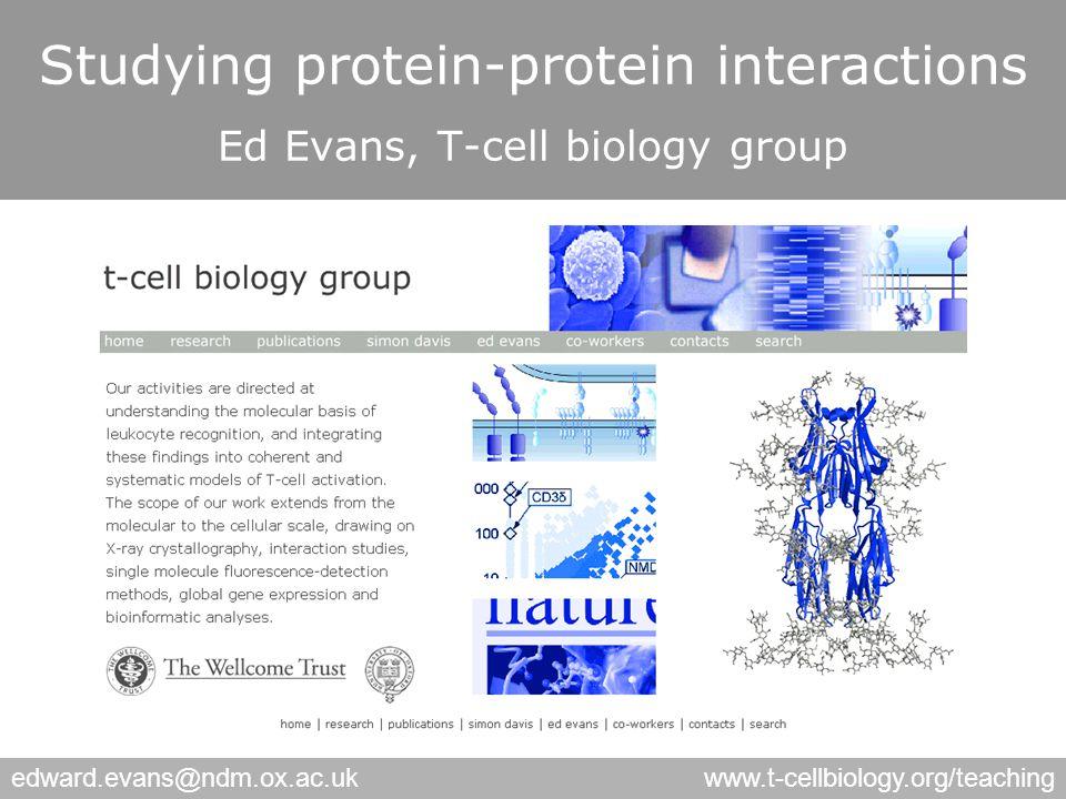 edward.evans@ndm.ox.ac.ukwww.t-cellbiology.org/teaching Immunoaffinity TAP tagging 2D gel Formaldehyde crosslinking etc…..