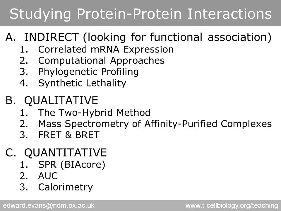 edward.evans@ndm.ox.ac.ukwww.t-cellbiology.org/teaching Studying Protein-Protein Interactions A.INDIRECT (looking for functional association) 1.Correlated mRNA Expression 2.Computational Approaches 3.Phylogenetic Profiling 4.Synthetic Lethality B.QUALITATIVE 1.The Two-Hybrid Method 2.Mass Spectrometry of Affinity-Purified Complexes 3.FRET & BRET C.QUANTITATIVE 1.SPR (BIAcore) 2.AUC 3.Calorimetry