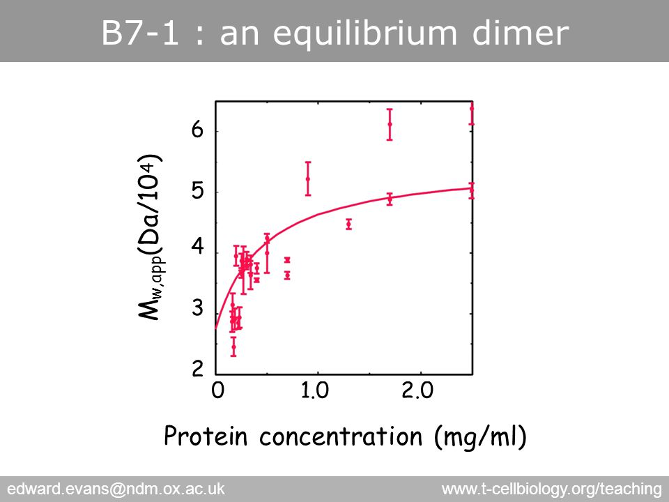 edward.evans@ndm.ox.ac.ukwww.t-cellbiology.org/teaching Protein concentration (mg/ml) 6 5 4 3 2 01.02.0 M w,app (Da/10 4 ) sB7-1 B7-1 : an equilibrium dimer