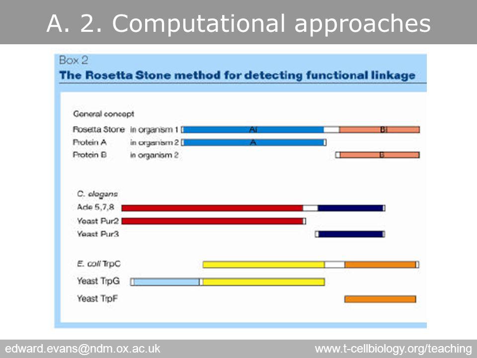 edward.evans@ndm.ox.ac.ukwww.t-cellbiology.org/teaching A. 3. Phylogenetic Profiling