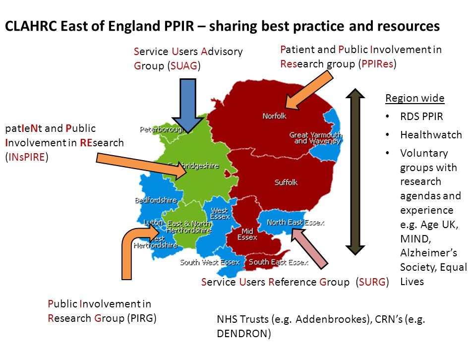 Public Involvement in Research Group (PIRG) Patient and Public Involvement in Research group (PPIRes) patIeNt and Public Involvement in REsearch (INsP