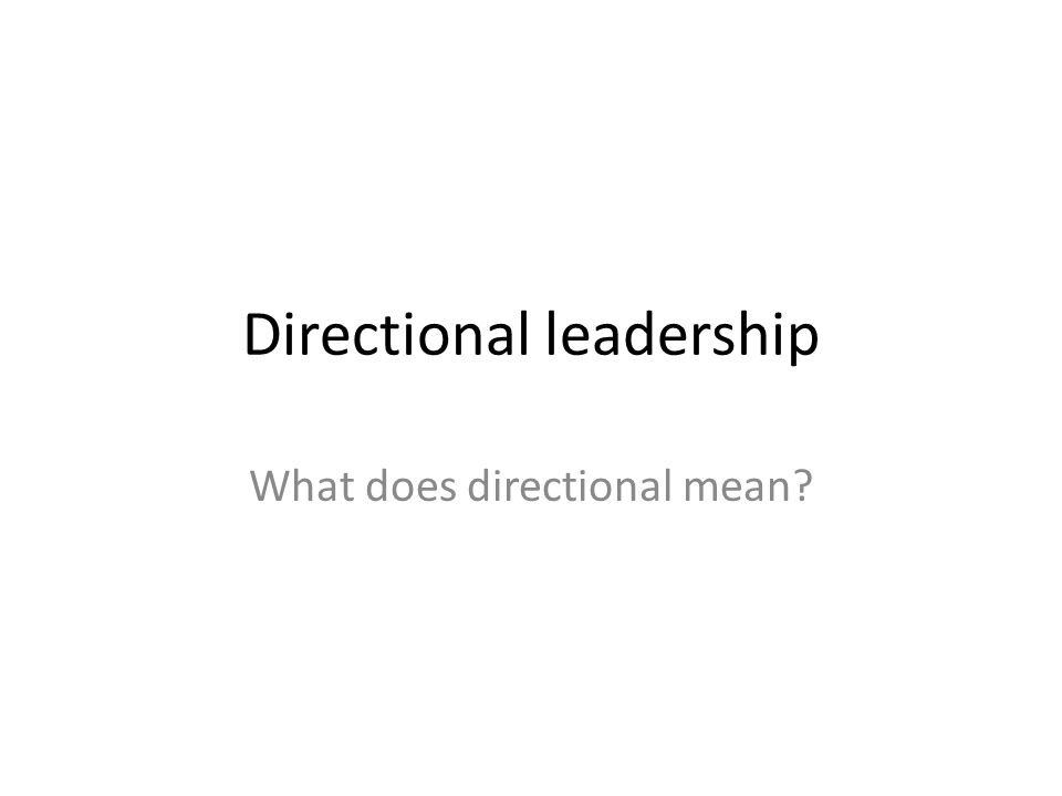 Directional leadership What does directional mean