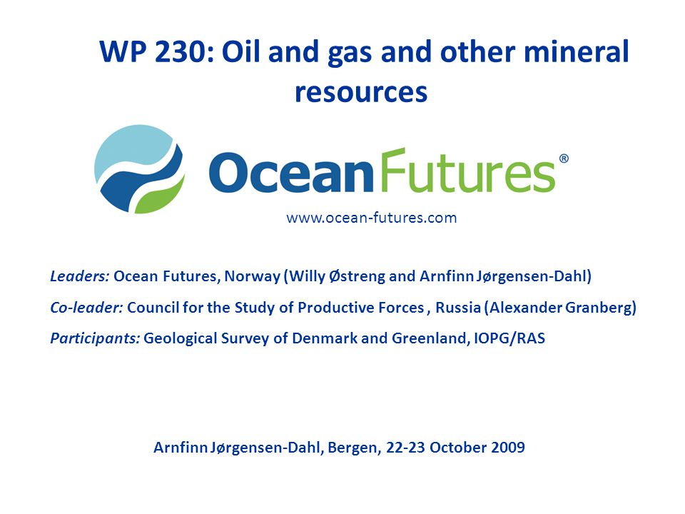 WP 230: Oil and gas and other mineral resources Leaders: Ocean Futures, Norway (Willy Østreng and Arnfinn Jørgensen-Dahl) Co-leader: Council for the S