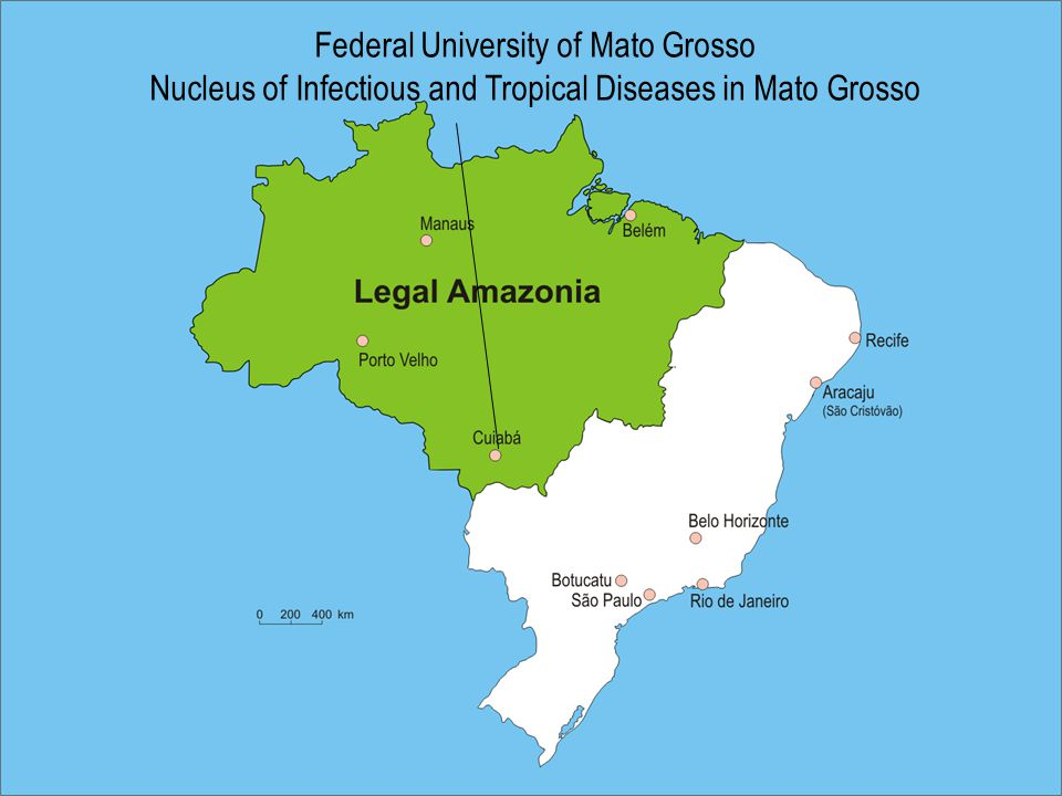 Federal University of Mato Grosso Nucleus of Infectious and Tropical Diseases in Mato Grosso